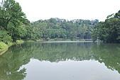 遊後慈湖:DSC_0760.JPG