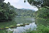 遊後慈湖:DSC_0845.JPG
