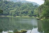 遊後慈湖:DSC_0847.JPG