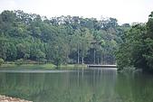 遊後慈湖:DSC_0752.JPG