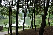 遊後慈湖:DSC_0912.JPG