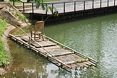 遊後慈湖:DSC_0813.JPG
