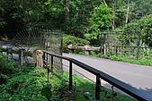 遊後慈湖:DSC_0734.JPG