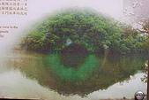 遊後慈湖:DSC_0802.JPG