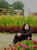 中社觀光花市:阿華7.jpg
