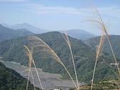 霧社~~碧湖:清靜之美1 029.jpg