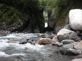 4-5  台灣櫻花鉤吻鮭  族群數量調查:DSCN9506  桃山西溪--調查終點六號壩