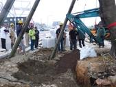 擴大樹穴結構模組--台中列管老樹移植施工實例:105-1206 台中水湳列管老樹移植 (341).jpg