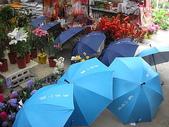 7  藍山園藝:藍山園藝  請用雨傘 04.JPG