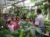 7  藍山園藝:藍山園藝--小學校外教學   DSCN1543