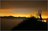 5-1  台灣的自然美景--網路圖片:夜間的夫妻樹.jpg