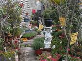 7  藍山園藝:藍山園藝  室外二區2717