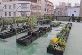 1-4  屋頂菜園 -- 竹南營盤社區之社區營造屋頂菜園:103-1022 屋頂菜園--營盤社區營造 (212).jpg