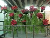 2-1  植生綠牆-花牆-立面綠化-垂直綠化-植生牆:綠牆 -- 新營休息站 990224-01.JPG