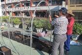 1-4  屋頂菜園 -- 竹南營盤社區之社區營造屋頂菜園:103-1022 屋頂菜園--營盤社區營造 (163).jpg