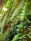 2-1  植生綠牆-花牆-立面綠化-垂直綠化-植生牆:國家音樂廳  綠牆  12.jpg