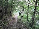 4-5  武陵的植物:武陵賞蝶步道及觀魚台解說  100-07
