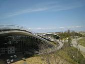 1-1  綠屋頂 -- 屋頂綠化:屋頂綠化-綠屋頂 IMG_4486.JPG