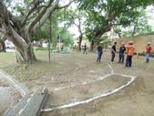 樹木基盤改善--台北列管老樹816號:105-1020 樹木基盤改善--台北列管老樹816號 (9).jpg