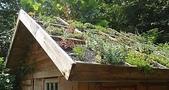 1-1  綠屋頂 -- 屋頂綠化:living-roofs.jpg