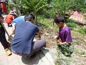 4-4  雪見 - 環境教育及工作假期:104-0430-2 泰安國小環境教育--種樹 (41).jpg