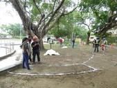 樹木基盤改善--台北列管老樹816號:105-1020 樹木基盤改善--台北列管老樹816號 (13).jpg