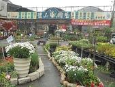 7  藍山園藝:100-0220 藍山園藝 019.jpg