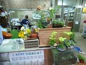 7  藍山園藝:105-0630 藍山園藝  (33).jpg