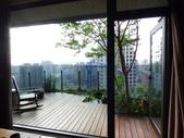 陽台上種大樹 -- 若山:105-1021 綠建築新工法審查--若山 (37).jpg