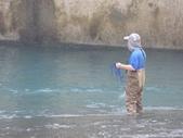 上坪堰鯝魚採捕搬運:105-0403 上坪堰搬魚 (3).jpg