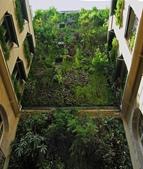 綠牆--法國綠牆大師派翠克.布朗克(Patrick Blanc)綠牆作品:b951d8bea02fc845107fa5d347c5bdc2.jpg