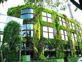 綠牆--法國綠牆大師派翠克.布朗克(Patrick Blanc)綠牆作品:blanc-wall2.jpg