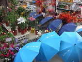 7  藍山園藝:藍山園藝  請用雨傘 03.JPG