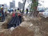 擴大樹穴結構模組--台中列管老樹移植施工實例:105-1206 台中水湳列管老樹移植 (215).jpg