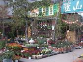 7  藍山園藝:藍山園藝  DSCN5455