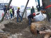 擴大樹穴結構模組--台中列管老樹移植施工實例:105-1206 台中水湳列管老樹移植 (340).jpg