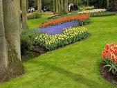 5-4  美麗的花園:美麗花園  004.jpg