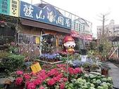 7  藍山園藝:100-0220 藍山園藝 053.jpg