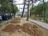 樹木棲地改善--麗池公園土壤透氣工法:104-1223 麗池--透氣工法 (24).jpg