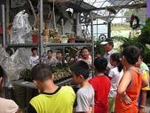 7  藍山園藝:藍山園藝--小學校外教學   DSCN1558