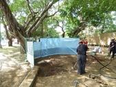 樹木基盤改善--台北列管老樹816號:105-1020 樹木基盤改善--台北列管老樹816號 (57).jpg