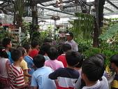 7  藍山園藝:藍山園藝--小學校外教學   DSCN1516