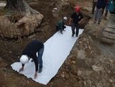 擴大樹穴結構模組--台中列管老樹移植施工實例:105-1206 台中水湳列管老樹移植 (206).jpg