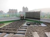 1-11  綠屋頂 -- 盆缽式綠屋頂、屋頂菜園:盆缽式綠屋頂 -- 高雄七賢國中龍美校區 (6)