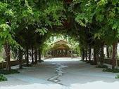 5-4  美麗的花園:美麗花園  039.jpg