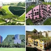 1-1  綠屋頂 -- 屋頂綠化:相簿封面