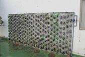 1-4  屋頂菜園 -- 竹南營盤社區之社區營造屋頂菜園:103-1022 屋頂菜園--營盤社區營造 (217).jpg