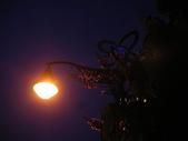 6-1  藍山生活:公路花園的黃昏 10.JPG