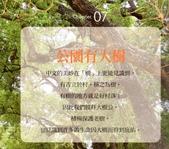 好書推薦:愛上芳草幸福日 (12).jpg