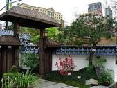4-6  雪山--五月賞杜鵑:3064  日式庭園--香港花展.JPG